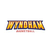 Logo   new partner wyndham basketball
