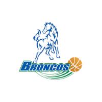 Logo   new partner broadmeadows